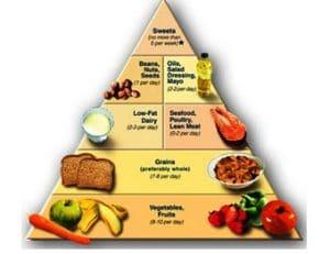 dash dieet plan